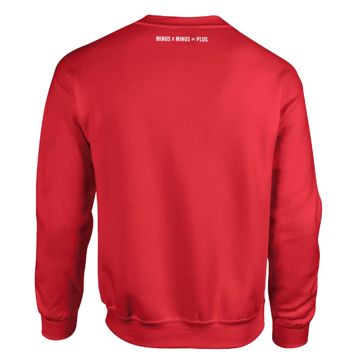 Disarstar Minus Sweater Sweater rot